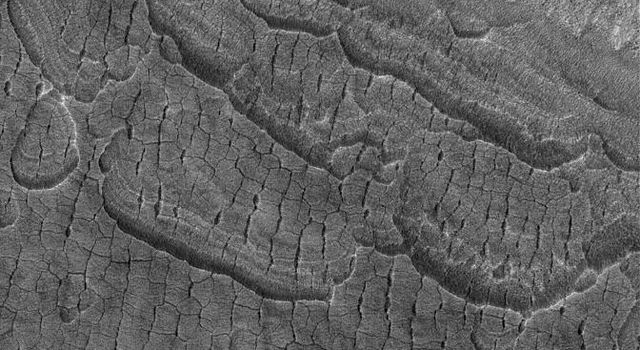 This image from NASA's Mars Global Surveyor shows cracked, layered plains-forming material in the western part of Utopia Planitia, Mars.