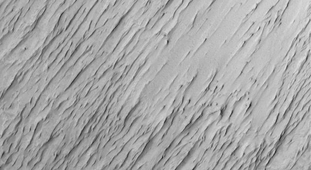 NASA's Mars Global Surveyor shows the contact between a group of yardangs, tapered ridges formed by the removal of relatively easily-eroded material and a concentration of dark-toned windblown sand on the floor of a crater in Terra Sabaea.