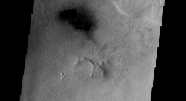 This image from NASA's Mars Odyssey spacecraft shows gullies on the southern rim of this unnamed crater in Terra Cimmeria on Mars.