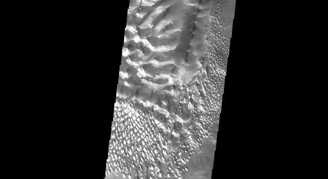 This image shows part of the dune field located on the floor of Russell Crater on Mars as seen by NASA's Mars Odyssey spacecraft.