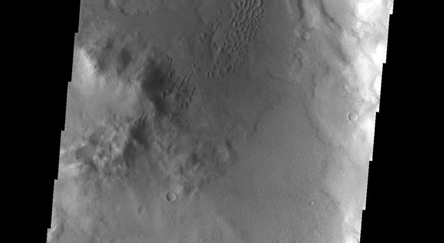 This image from NASA's Mars Odyssey spacecraft shows an unnamed crater in the southern hemisphere of Mars containing both gullies on the crater rim and sand dunes on the crater floor.