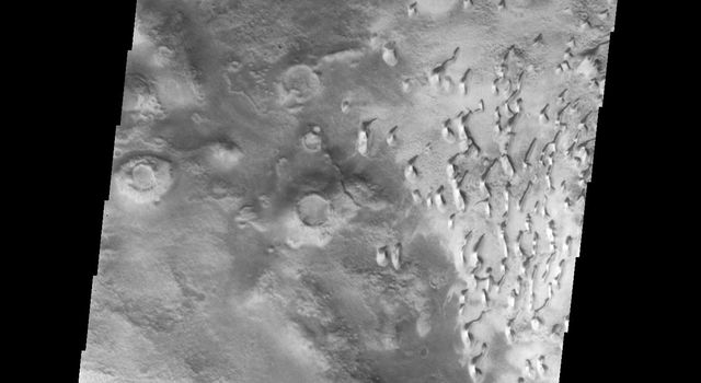 This image from NASA's Mars Odyssey spacecraft shows a field of small dunes, located on the floor of an unnamed crater in the southern hemisphere of Mars.