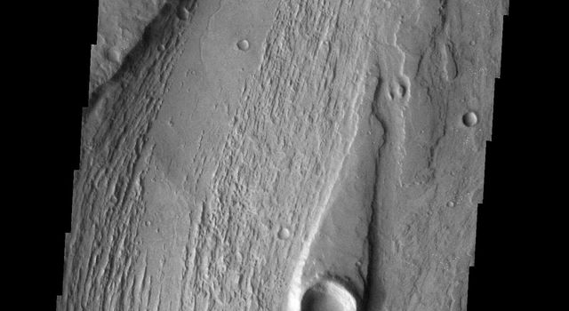 This image from NASA's Mars Odyssey spacecraft shows part of Managala Vallis on Mars, including a streamlined island. The narrow tail of the island points downstream.