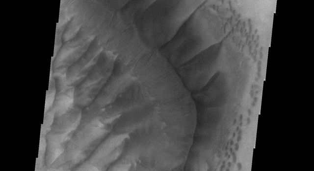 This image from NASA's Mars Odyssey spacecraft shows dunes on Mars that are dark in tone.