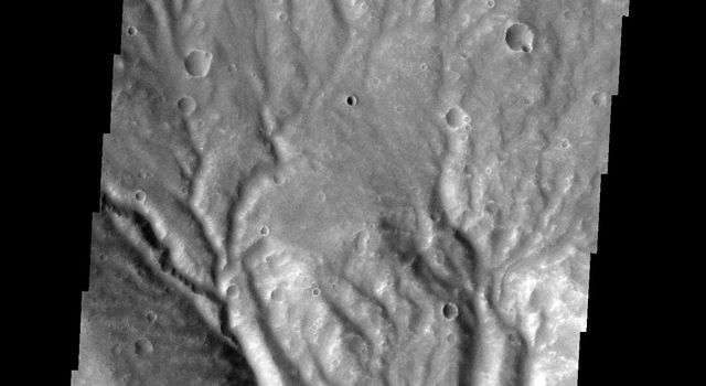 This image from NASA's Mars Odyssey spacecraft shows part of the rim of Huygens Crater on Mars. The rim is deeply incised with channels.