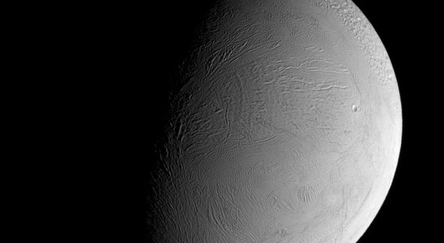 The leading hemisphere of Enceladus displays a remarkably fresh-looking surface in this recent view from NASA's Cassini spacecraft. At this resolution, only a few craters can be made out in this wrinkled region of the geologically active moon's surface.