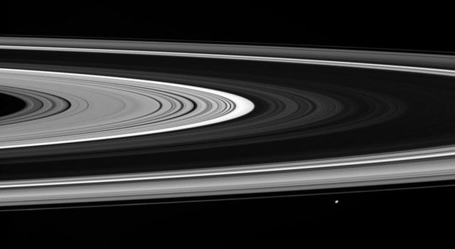 Janus coasts past as NASA's Cassini spacecraft takes in a view of the unilluminated side of the rings. Bright regions within the rings appear so because they allow scattered sunlight to filter through.