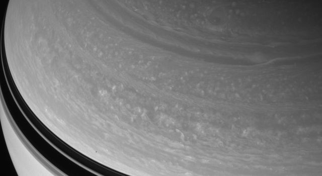 Great circular vortices churn through Saturn's northern skies. The planet wears the shadow of its rings as a dark belt in this image from NASA's Cassini spacecraft. Just above that belt is the shadow of 181-kilometer (113-mile) wide Janus.