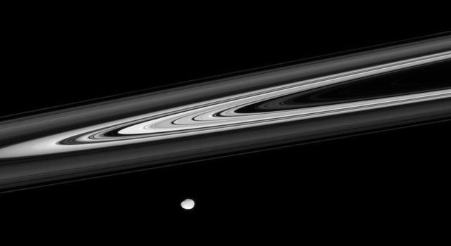 On Jan. 29, 2008, NASA's Cassini spacecraft viewed Saturn's luminescent rings provide striking contrasts of light and darkness, as the irregular shape of Janus glides across the foreground.
