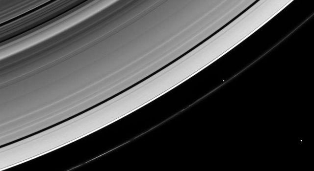 NASA's Cassini spacecraft looks down from a high-inclination orbit to spot two of Saturn's ring moons, Prometheus and Janus.