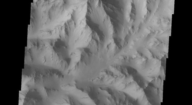 This image from NASA's Mars Odyssey spacecraft shows the rugged northern wall of the canyon Ophir Chasma on Mars.