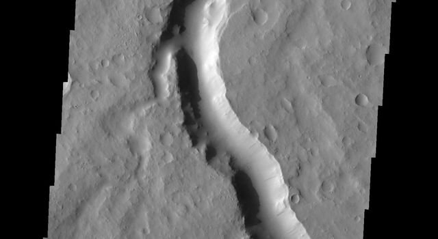 This image from NASA's Mars Odyssey spacecraft shows Scamander Vallis on Mars which contains several tributaries entering the main channel.
