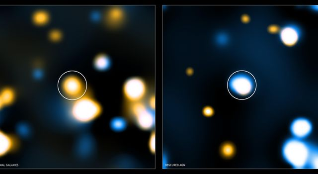 These two images show 'stacked' Chandra images for two different classes of distant, massive galaxy detected with NASA's Spitzer. Image stacking is a procedure used to detect emission from objects that is too faint to be detected in single images.