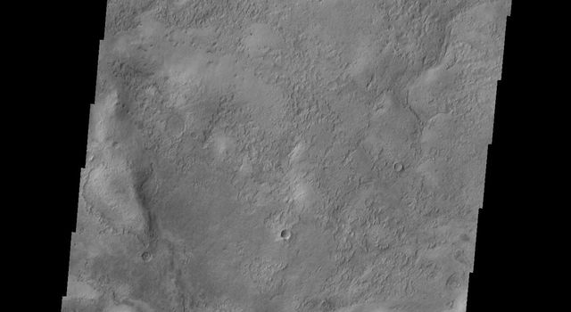 This image from NASA's Mars Odyssey shows small, isolated dunes located near the northeast margin of Copernicus Crater on Mars.