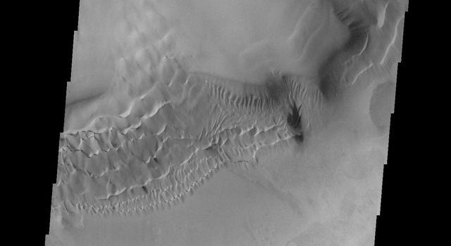 This image from NASA's Mars Odyssey shows a portion of the floor and inner 'moat' of Hooke crater on Mars. The dunes are climbing up the inner wall of the 'moat.'