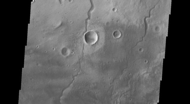 This image from NASA's Mars Odyssey shows small dunes and channels on Mars located on this region of the floor of Newton Crater.