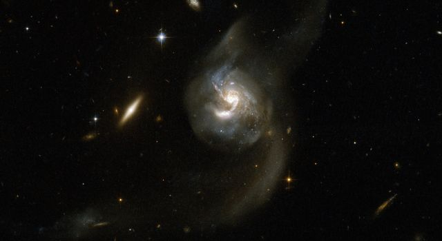 NGC 6090 is a beautiful pair of spiral galaxies with an overlapping central region and two long tidal tails formed from material ripped out of the galaxies by gravitational interaction. This image is from NASA's Hubble Space Telescope.