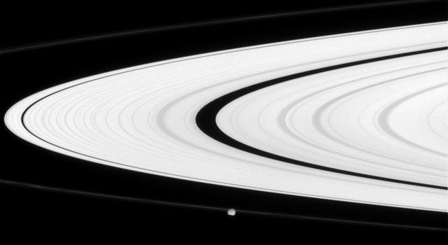 Saturn's narrow F ring partly obscures the small moon Epimetheus. Interior to the F ring is the bright A ring in this image captured by NASA's Cassini spacecraft on June 11, 2008.