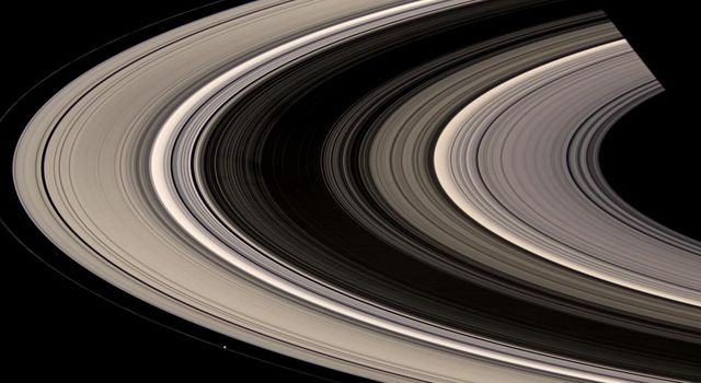 Saturn's rings burst out of shadow and curve gracefully around the planet. Prometheus and Atlas are also visible, faintly, just outside the A ring edge in this image captured by NASA's Cassini spacecraft on July 4, 2008.