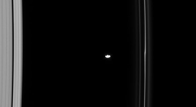 NASA's Cassini spacecraft spied Saturn's moon, Prometheus, one of the F ring shepherds, orbiting between the A and F rings. The F ring shows a kink near Prometheus, due to the moon's gravitational effect.