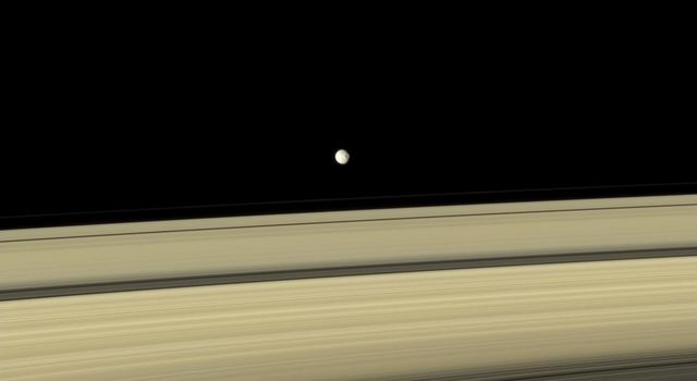 Gray Mimas appears to hover above the colorful rings. The large crater seen on the right side of the moon is named for William Herschel, who discovered Mimas in 1789.