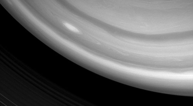 NASA's Cassini spacecraft image captured a bright, oblong storm swirling high through the middle latitudes of the southern hemisphere. taken on Jan. 5, 2008.