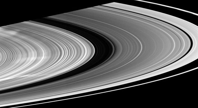 Three large white spokes stretch out across the B ring in this image from NASA's Cassini spacecraft taken on Jan.14, 2009.