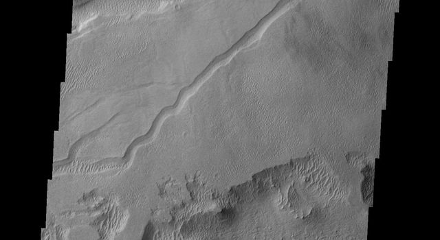 This image from NASA's Mars Odyssey shows a small region of wind erosion and deposition in the Tharsis area on Mars.
