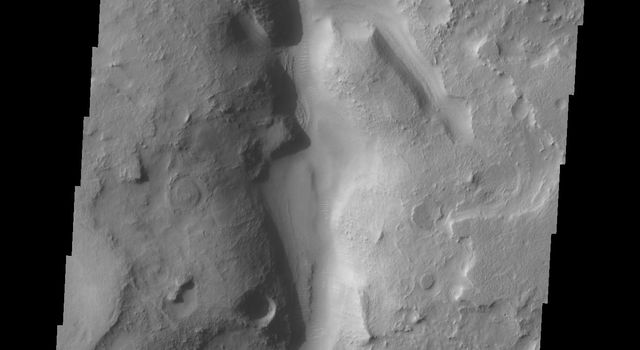 This image from NASA's Mars Odyssey shows a small portion of Auqakuh Vallis on Mars. Several tributaries enter the main channel in the center and upper portions of the image.