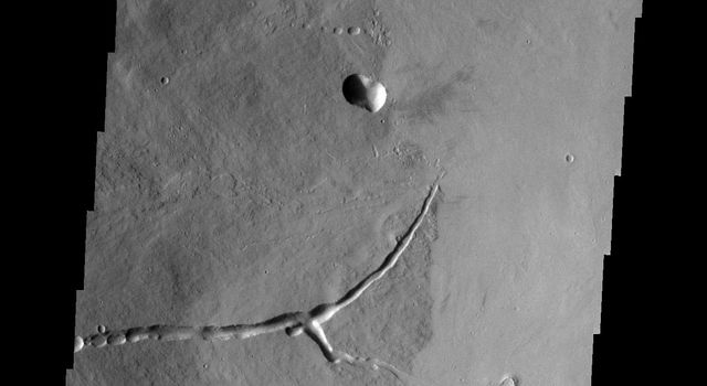 This image from NASA's Mars Odyssey shows the eastern flank of Ascraeus Mons on Mars.