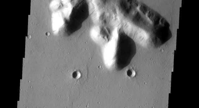 This image from NASA's Mars Odyssey shows dark slope streaks prevalent on these isolated hills near the Tartarus Montes on Mars.