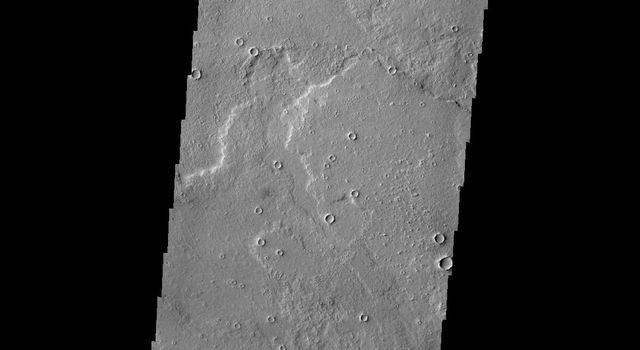 This image from NASA's Mars Odyssey shows Daedalia Planum on Mars, comprised of extensive volcanic flows. Windstreaks have developed in the lee of many craters within the planum.