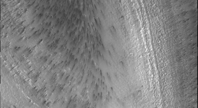 This image from NASA's Mars Odyssey shows Mars' south polar region, where spots appear on the ice. The dark material of the spots is apparently mobile with the wind able to lengthen the spots into streaks.