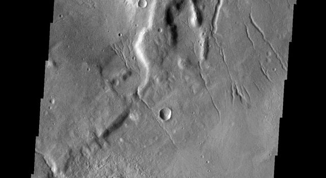 This image from NASA's Mars Odyssey shows channels on the surface of Mars.