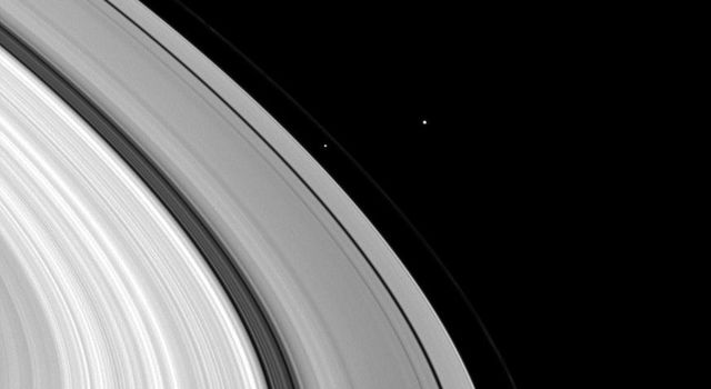 Three moons, Janus, Prometheus, and Daphnis, have bunched themselves together in this image of Saturn's rings in this image from NASA's Cassini spacecraft taken on March 2, 2009.