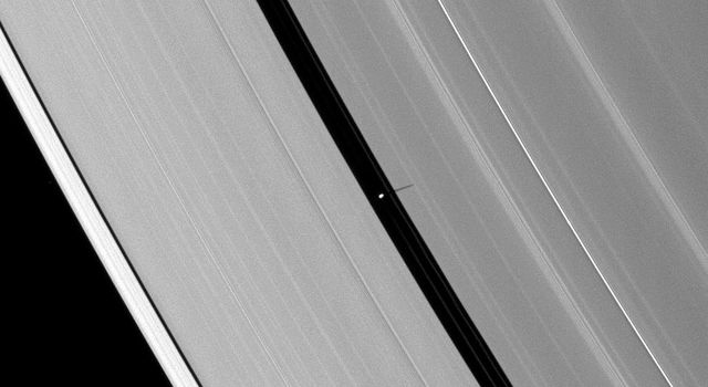 Saturn's moon Pan casts a delicate shadow onto the planet's A ring. NASA's Cassini spacecraft took this image on May 2, 2009.