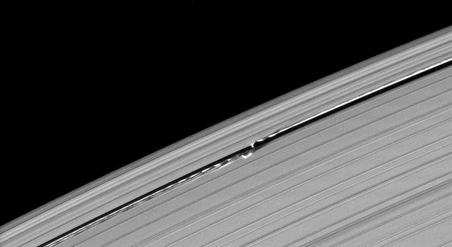 Waves in the edges of the Keeler gap in Saturn's A ring, created by the embedded moon Daphnis, show considerable complexity in this image taken as Saturn approached its August 2009 equinox. This image is from NASA's Cassini spacecraft.