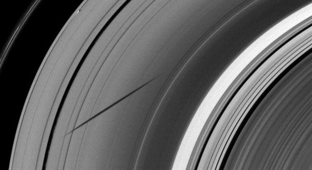 The shadow of the moon Janus dwarfs the shadow of Daphnis on Saturn's A ring in this image taken as the planet approached its August 2009 equinox. This image is from NASA's Cassini spacecraft.