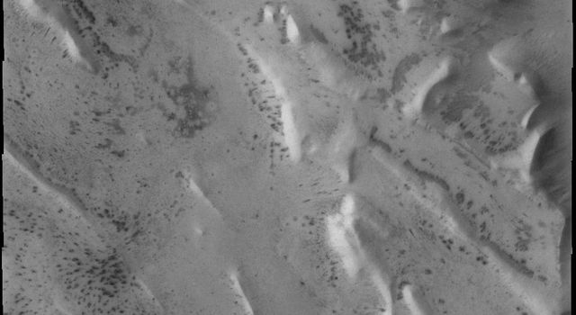 This image from NASA's Mars Odyssey shows a portion of Angustus Labyrinthus, a region of intersecting linear ridges near the south pole of Mars.