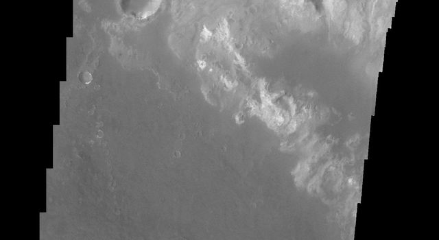 This image of Holden Crater shows some of the small dark dunes located on the floor of the crater on Mars as seen by NASA's Mars Odyssey spacecraft.
