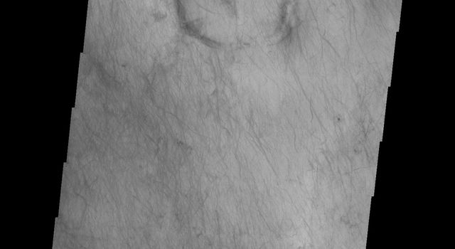 The dunes and dust devil tracks in this image are located on the plains of Planum Chronium on Mars as seen by NASA's Mars Odyssey spacecraft.
