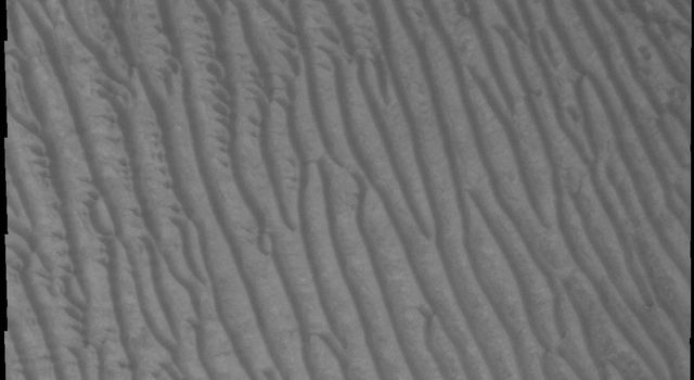 This 2001 Mars Odyssey image shows the sand sheet with surface dune forms located on the floor of Richardson Crater on Mars.