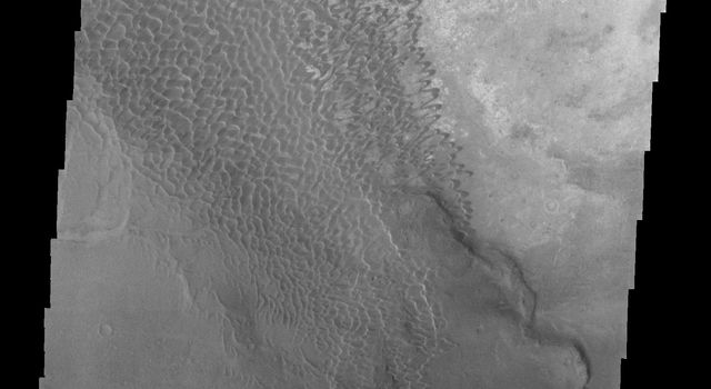This image from NASA's Mars Odyssey shows part of a dune field located in the southeastern portion of Nili Patera on Mars.