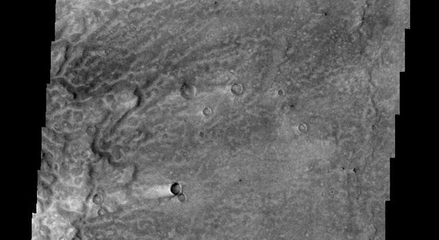 This image from NASA's Mars Odyssey shows 'tails' behind these craters in Syrtis Major that are windstreaks. Winds have removed and deposited fine material around the craters on Mars.