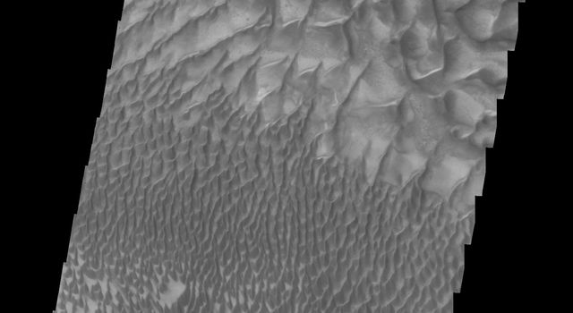 This image from NASA's Mars Odyssey shows the large sand sheet and dune forms on the floor of Russell Crater on Mars.