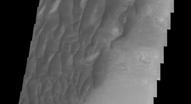 This image from NASA's Mars Odyssey shows part of the floor of Kaiser Crater including dunes on Mars. The floor of the crater is visible between the dunes.