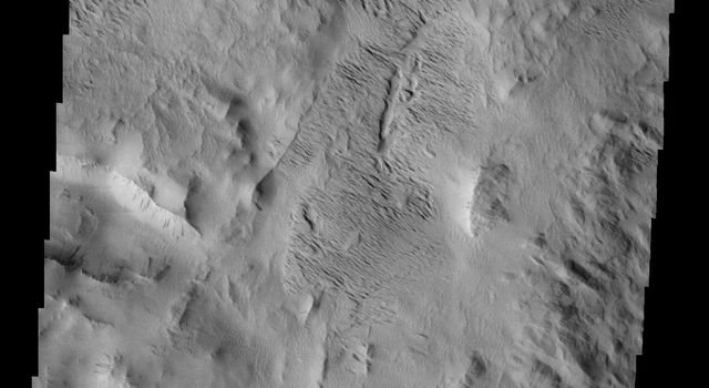 This image from NASA's Mars Odyssey shows several features found in Lycus Sulci on Mars including tectonic derived ridges (bottom of frame) with dark slope streaks and extensive wind etching and erosion of materials (top of frame).