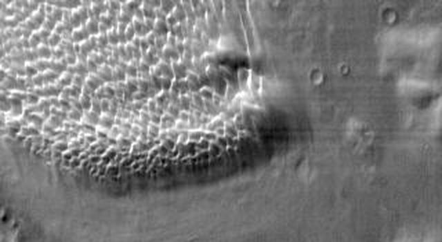 This image from NASA's 2001 Mars Odyssey shows the sand sheet with dune forms located on the floor of Rabe Crater.