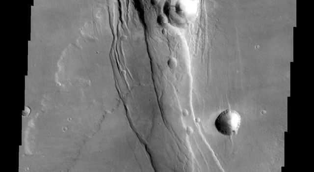 This NASA 2001 Mars Odyssey image of the southwestern flank of Alba Mons shows lava flows and collapse features.