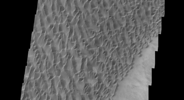 This image of the floor of Proctor Crater, taken by NASA's 2001 Mars Odyssey spacecraft, shows part of the sand sheet and dune forms that are located there.